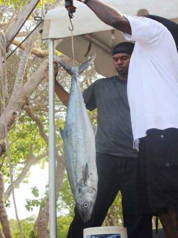 Officials for the Fisherman's tournament weighing the catch of one of the participants. Photo: VINO