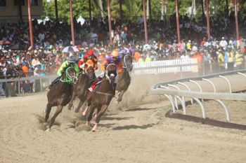 Scene from the St Thomas Carnival Races at the Clinton E. Phipps racetrack on May 2, 2014. Photo: Andre 'Shadow' Dawson