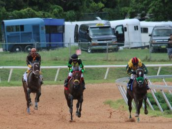Following negotiations with the DMV in Tortola and the DMV in St Thomas, Smith said horse owners are now able to make provisions to take vehicles which pull horse trailers to and from the neighbouring island. Photo: VINO
