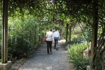 It has been said that the J. R. O'Neal Botanical Garden has outgrown its space in Road Town. Photo: VINO
