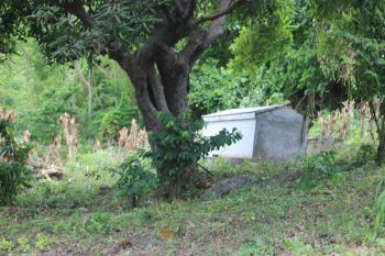 The proposed burial site for Jenaro A. Callwood at his family's Arundel Estate property in Cane Garden Bay. Photo: VINO