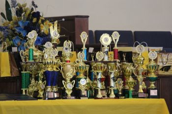Some of the trophies on offer for the graduating students. Photo:VINO