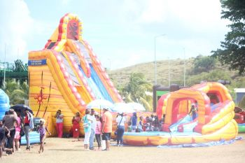 One of the giant water slides. Photo: VINO