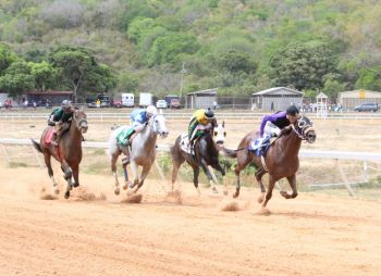 Apart from bragging rights among horse owners and racing fanatics, the feature race fetches a purse of $10, 000 sponsored by Premier Dr The Hon D. Orlando Smith. Photo: VINO/File