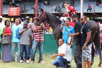 The final race, which for the fans became the feature race of the day, was won by Jordan's Image of St Thomas and owned by Michael Smith of Point Alliance Stables. This race was sponsored by JoAnn 'Roxie' Romney and the Virgin Islands Party (VIP). Photo: VINO