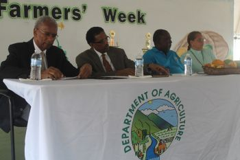 Official opening of Farmers' Week2014 on Tortola. Photo: VINO