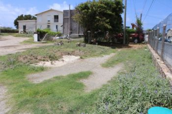 This area in the compound of the Virgin Gorda Elderly Home could do well with some landscaping work. Photo: VINO