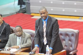 """Any information coming to this House Madam Speaker whether it be by the Leader of the Opposition or junior Ministers making statements must be factual, must be accurate and Madam Speaker if it found not to be the penalties should be clear,"" he said. Photo: VINO/File"