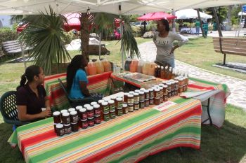 This group sold mango products in jars and bottles at the Fifth Annual Mango Array and Tropical Fruit Festival at the Noel Lloyd Positive Action Movement Park held today July 18, 2014. Photo: VINO