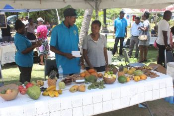 The Fifth Annual Mango Array and Tropical Fruit Festival at the Noel Lloyd Positive Action Movement Park held today July 18, 2014 saw food and fruits among other things being sold. Photo: VINO