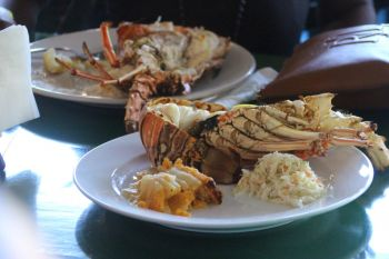 Mouthwatering lobster at Big Bamboo Restaurant on Anegada on November 30, 2019. Photo: VINO
