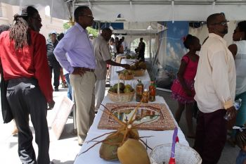 Participants view exhibits at the Friendship village held during the 40th annual VI/USVI Friendship Day in Virgin Gorda. Photo: VINO