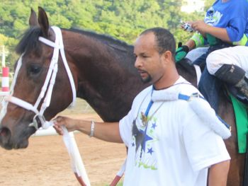 Horse owner Alex V. Lake mentioned after the horse's last win in St Croix last month that he may next run Town Hall in the Easter Races at Ellis Thomas Downs before taking him across to the Governor's Cup in St Thomas but was still considering his options. Photo: VINO/File