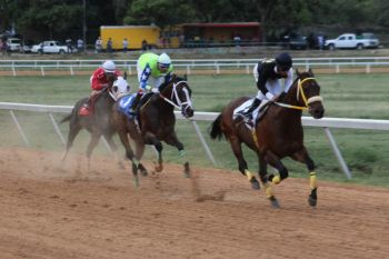 Scene from the Easter races held at Ellis Thomas Downs in Sea Cows Bay on April 13, 2014. Photo: VINO