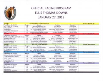 There will be five races which will include horses from St. Thomas in the United States Virgin Islands. According to the race card the purses range from $5000 to $8000. Photo: Team of Reporters