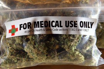 An example of medical marijuana. Photo: globalgenes.org