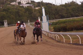 Doughmaker (left) on the track heading for victory. Photo: Andre 'Shadow' Dawson