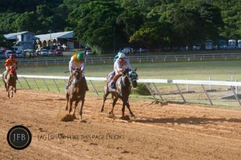 Scenes from the Premier's Cup held earlier this year at Ellis Thomas Downs. Photo: John F. Black