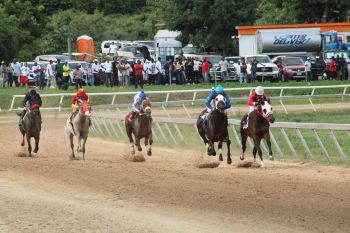 Class D horses battling over 7 furlongs for a purse of $9000.00. Barrabas Key won in a blistering 129 flat. Photo: VINO