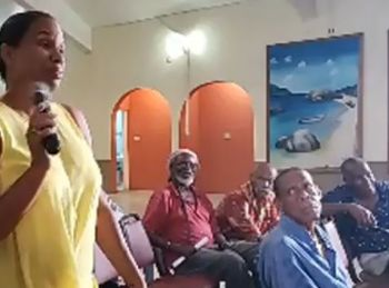 Shocked residents watched on in horror as Rosemary R. Rosan-Jones aka 'Cindy' inquired from Opposition Members about how to remove the three month old Virgin Islands Party (VIP) Government from office and whether that was an option on the books. Photo: Facebook