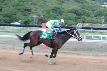 Family Affairs' Town Hall of Tortola will not be in the feature race tomorrow, March 23, 2014 in St Thomas. Photo: VINO/File