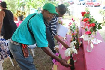 Judges assessing the Virgin Gorda grown flower plants at the Farmers' Week exhibition on February 7, 2013. Photo: VINO