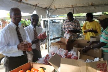 Territorial At-Large Representative Hon. Archibald C. Christian and Premier and Minister of Finance Dr the Honourable D. Orlando Smith (left) are fascinated by the freshly grown tomatoes grown by the Legair family. Photo: VINO